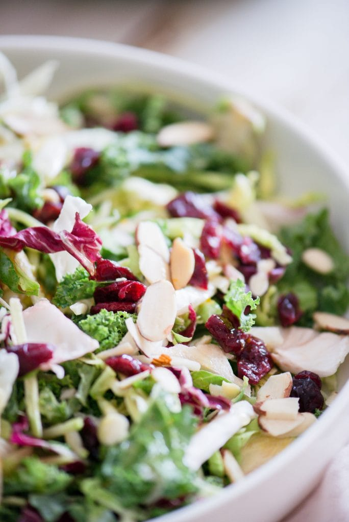 Close up photo of a bed of festive Holiday Salad. The salad made of purple cabbage, shaved Brussels sprouts, broccoli slaw, kale, and topped with dried cranberries and sliced almonds, is in a large white serving bowl.