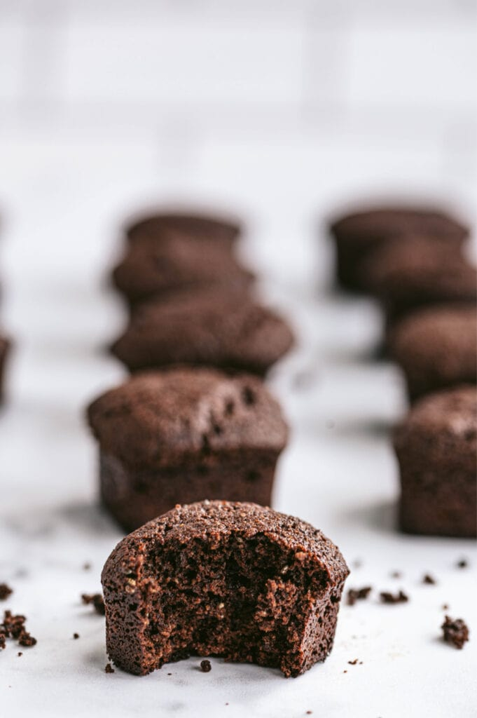 Side view of rows of individual healthy brownies